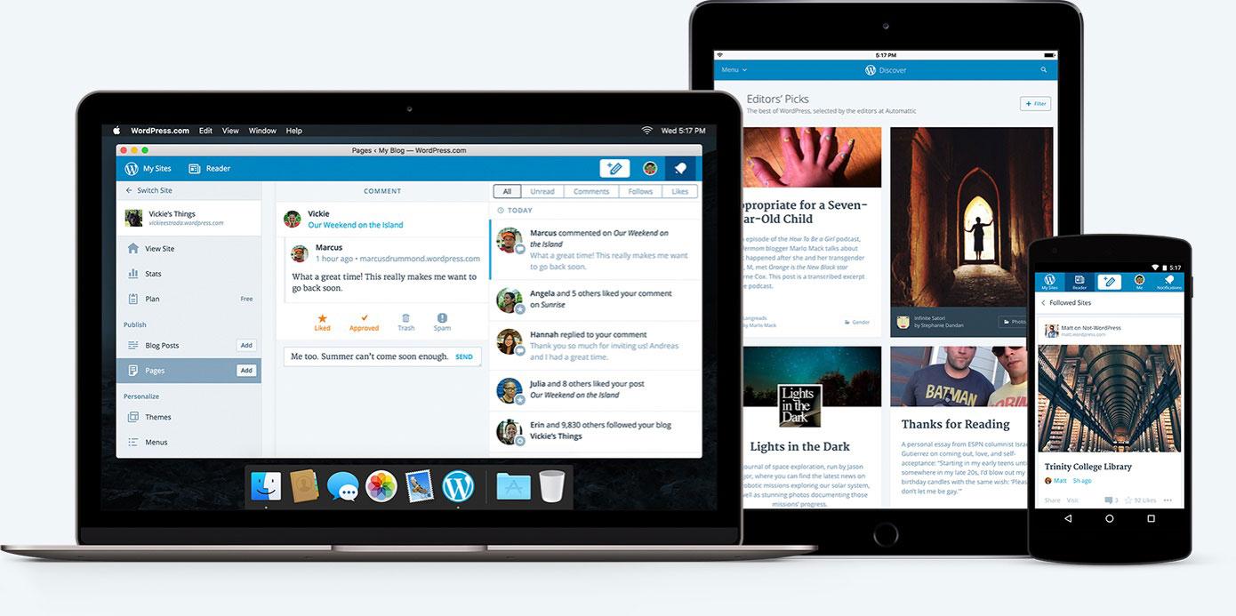 WordPress (Developer) Screenshot 3